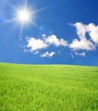 πράσινος ήλιος ουρανού π&ep Στοκ φωτογραφία με δικαίωμα ελεύθερης χρήσης