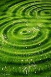 πράσινος ανασκόπησης που κυματίζεται Στοκ Φωτογραφία
