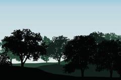 Πράσινος αποβαλλόμενο δάσος ή οπωρώνας μεταξύ των λόφων κάτω από μπλε σαφή ελεύθερη απεικόνιση δικαιώματος