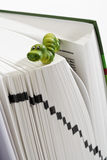 Πράσινος αριθμός σκουληκιών για το βιβλίο Στοκ φωτογραφία με δικαίωμα ελεύθερης χρήσης
