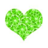 Πράσινος ασβέστης καρδιών διανυσματική απεικόνιση