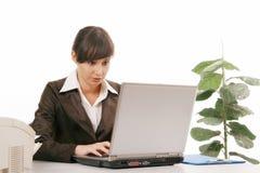 πράσινος εργαζόμενος γραφείων ανασκόπησης στοκ φωτογραφίες με δικαίωμα ελεύθερης χρήσης