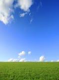 πράσινος ηλιόλουστος π&epsi Στοκ εικόνα με δικαίωμα ελεύθερης χρήσης