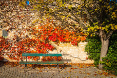 Πράσινος δημόσιος πάγκος σε μια αγροτική περιοχή στην Προβηγκία, Γαλλία Στοκ φωτογραφία με δικαίωμα ελεύθερης χρήσης