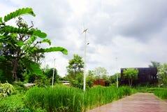 Πράσινος κήπος eco Στοκ εικόνα με δικαίωμα ελεύθερης χρήσης