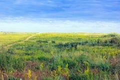 Πράσινος-κίτρινη χλοώδης κοιλάδα και μπλε cloudly ουρανός Στοκ Εικόνες