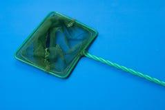 Πράσινος καθαρός για τη σύλληψη των ψαριών από το ενυδρείο, μπλε υπόβαθρο, πλέγμα με ένα μικρό κύτταρο Στοκ εικόνα με δικαίωμα ελεύθερης χρήσης