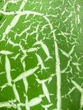 Πράσινος-και-άσπρη σύσταση ρωγμών Στοκ φωτογραφίες με δικαίωμα ελεύθερης χρήσης