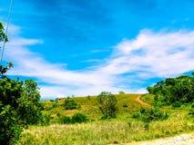 Πράσινος και ειρηνικός στοκ εικόνα