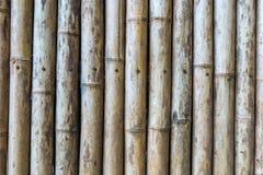 Πράσινος και καφετής φράκτης μπαμπού στοκ εικόνες
