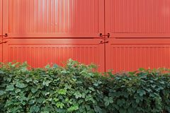 Πράσινος και πορτοκαλής Στοκ Εικόνα