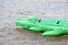 Πράσινος κροκόδειλος floater Στοκ Εικόνα