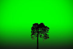 πράσινος κόσμος Στοκ Εικόνες