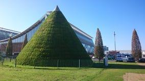 πράσινος κώνος στο Αννόβερο Στοκ εικόνα με δικαίωμα ελεύθερης χρήσης