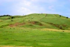 Πράσινος λόφος με έναν σταυρό στην κορυφή στοκ φωτογραφία με δικαίωμα ελεύθερης χρήσης