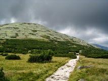 Πράσινος λόφος με το σκοτεινό ουρανό στοκ εικόνες