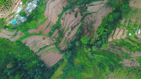 Πράσινος λόφος πεζουλιών ρυζιού σε Himalayan Νεπάλ από τον αέρα απόθεμα βίντεο