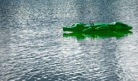 Πράσινος ματαιόδοξος κροκόδειλος στο παιχνίδι στο νερό Στοκ Εικόνες