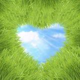 πράσινος ουρανός καρδιών χλόης πλαισίων ανασκόπησης Στοκ εικόνες με δικαίωμα ελεύθερης χρήσης