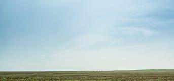 Πράσινος ουρανός τομέων ANS στοκ φωτογραφία