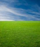πράσινος ουρανός χλόης Στοκ Εικόνα