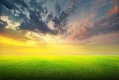 πράσινος ουρανός χλόης πεδίων Στοκ Εικόνες