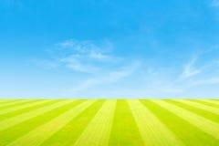 πράσινος ουρανός χλόης πεδίων Στοκ εικόνες με δικαίωμα ελεύθερης χρήσης
