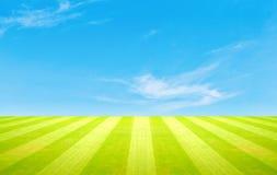 πράσινος ουρανός χλόης πεδίων Στοκ εικόνα με δικαίωμα ελεύθερης χρήσης