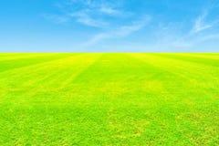 πράσινος ουρανός χλόης πεδίων Στοκ Φωτογραφία