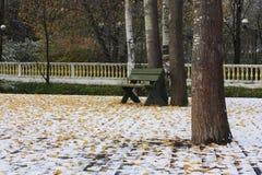 Πράσινος πάγκος και κίτρινα φύλλα στο χιόνι Στοκ φωτογραφία με δικαίωμα ελεύθερης χρήσης