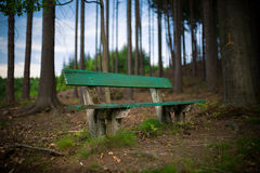 Πράσινος πάγκος στο δάσος Στοκ φωτογραφία με δικαίωμα ελεύθερης χρήσης