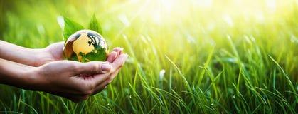 Πράσινος πλανήτης στα χέρια σας το περιβάλλον έννοιας προσοχής ανασκόπησης απομόνωσε μικρό παίρνει το λευκό δέντρων στοκ εικόνα με δικαίωμα ελεύθερης χρήσης
