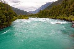 Πράσινος ποταμός με την πολύβλαστα βλάστηση και τα ορμητικά σημεία ποταμού Στοκ φωτογραφίες με δικαίωμα ελεύθερης χρήσης