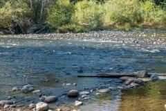 Πράσινος ποταμός που τρέχει χαμηλά 2 Στοκ Εικόνες