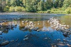 Πράσινος ποταμός που τρέχει χαμηλά 3 Στοκ φωτογραφία με δικαίωμα ελεύθερης χρήσης