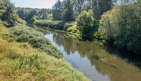 Πράσινος ποταμός 3 Στοκ Εικόνα