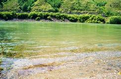 Πράσινος ποταμός! Στοκ Εικόνα