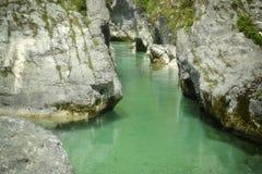 Πράσινος ποταμός Soca στη Σλοβενία Στοκ Εικόνες