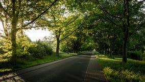 πράσινος δρόμος Στοκ Φωτογραφία