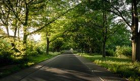 πράσινος δρόμος Στοκ φωτογραφία με δικαίωμα ελεύθερης χρήσης