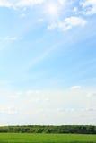πράσινος σίτος ουρανού τοπίων πεδίων Στοκ εικόνες με δικαίωμα ελεύθερης χρήσης