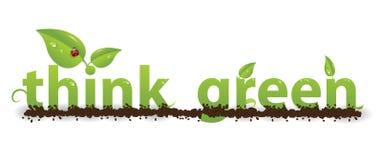 πράσινος σκεφτείτε Στοκ Εικόνες