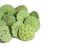 Πράσινος σπόρων Lotus που απομονώνεται Στοκ φωτογραφίες με δικαίωμα ελεύθερης χρήσης