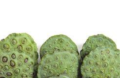 Πράσινος σπόρων Lotus που απομονώνεται Στοκ φωτογραφία με δικαίωμα ελεύθερης χρήσης