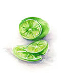 Πράσινος τεμαχισμένος ασβέστης άσπρο υποβάθρου που σύρεται σε ετοιμότητα στο watercolor Στοκ εικόνες με δικαίωμα ελεύθερης χρήσης