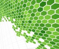 πράσινος τεχνολογικός &kappa Στοκ Εικόνα