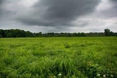 Πράσινος τομέας με τα σύννεφα θύελλας Στοκ Εικόνα