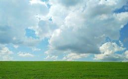 Πράσινος τομέας την άνοιξη μια θερμή νεφελώδη ημέρα στοκ φωτογραφία με δικαίωμα ελεύθερης χρήσης