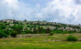 Πράσινος τομέας χλόης στα βουνά και μπλε ουρανός με τα σύννεφα στοκ φωτογραφία με δικαίωμα ελεύθερης χρήσης
