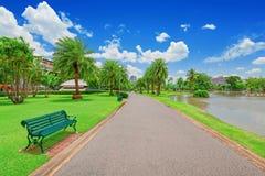 Πράσινος τομέας χλόης στο μεγάλο πάρκο πόλεων στοκ εικόνες